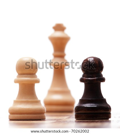 Black and white chess pieces isolated on a white background - stock photo