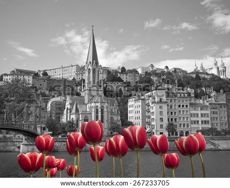 Black and white cityscape of old lyon france with red tulips on front - stock photo
