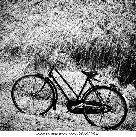 Black and white color of the old bicycle with straw background on vintage style - stock photo