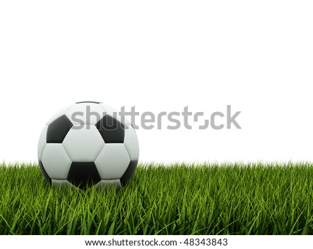 Black and white football on grass - stock photo
