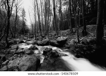 black and white forest landscape with cold river - stock photo