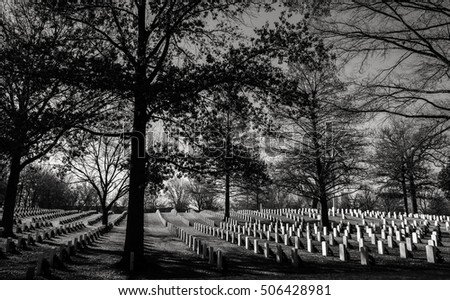 Black and white grave yard with multiple rows of headstones among bare, and nearly bare trees of late fall