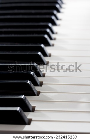 Black and white keys of a keyboard - stock photo
