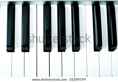 Black and white keys of piano