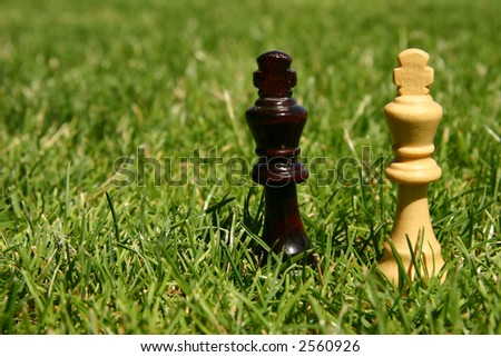Black and white king chess pieces outside in green grass - stock photo