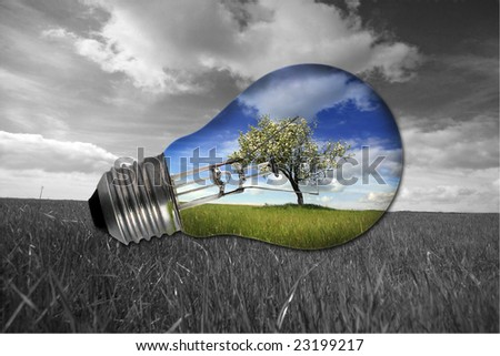 black and white landscape with colorful blue light bulb