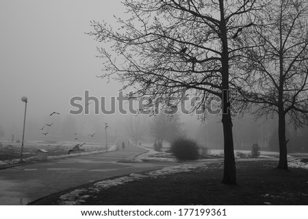 black-and-white photo of park in Minsk - stock photo