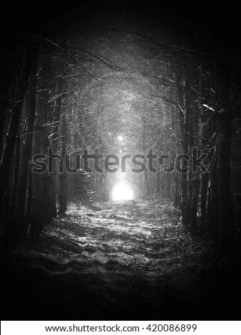 Black and white, Road in magic dark forest, dark vignetting, sun glare - stock photo