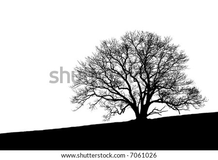 Black and white silhouette of a beautifully shaped and very intricately detailed tree sitting at the crest of a hill. - stock photo