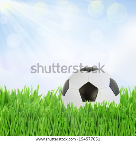 black and white soccer ball in  green grassonblue sky background