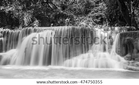 Black and White, stream waterfall in deep tropical forest background
