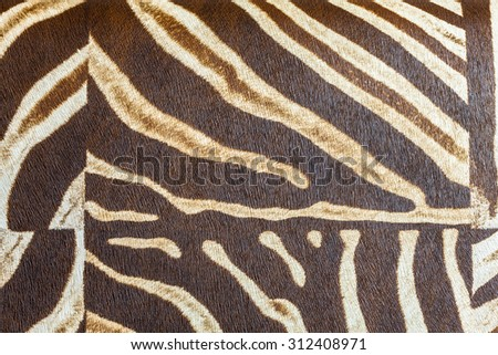 Black and white texture of zebra skin - stock photo