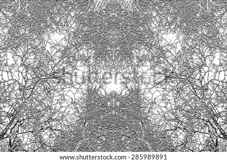 Black and white tree branches texture background - stock photo