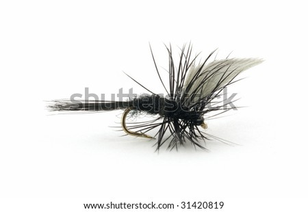 Black and white trout fishing fly - stock photo