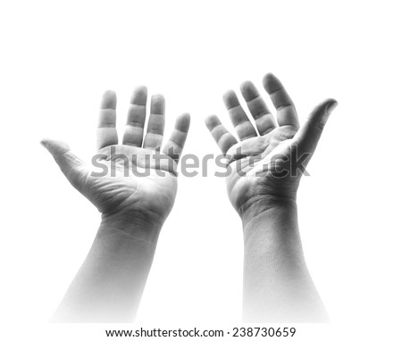 Black and white two open empty hands with palms up isolated on white. - stock photo
