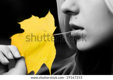 Black and white version (except maple leaf) - stock photo