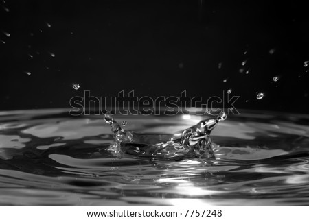 black and white water splash with drops and forming a corona