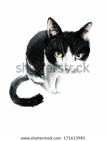 Black and white watercolor cat looks - stock photo