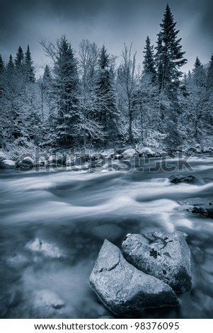 Black and white winter scene with tree,stones and a river. Dramatic blue tint to show the cold weather. Large depth of field. - stock photo