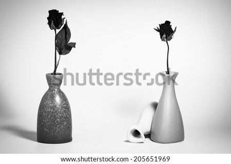 Black and white withered roses in vase - stock photo