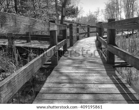 Black and white wooden walkway bridge with brush around it in a park setting