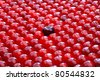 Black big cherry among small red cherries. Shallow depth of field. - stock photo
