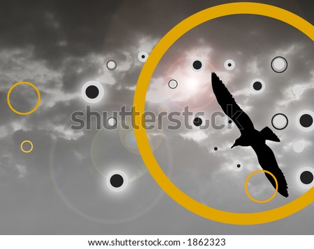 black bird silhouette flying on cloudy sky background. - stock photo