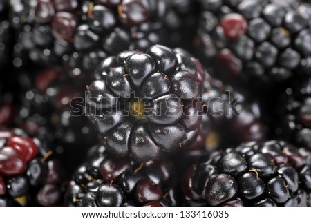 Black blackberry texture or background