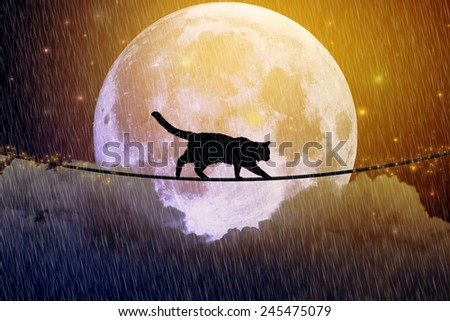 Black cat, kitty walking on rope above the clouds at full moon, rainy cloudy dark sky night background. Dreamy nature magic skyline, artistic screen saver. Elements of this image furnished by NASA - stock photo