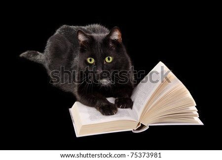 Black cat reading a book lying on black background - stock photo