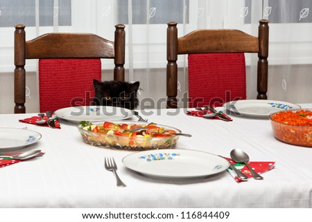 Black cat sitting at the Christmas table. - stock photo