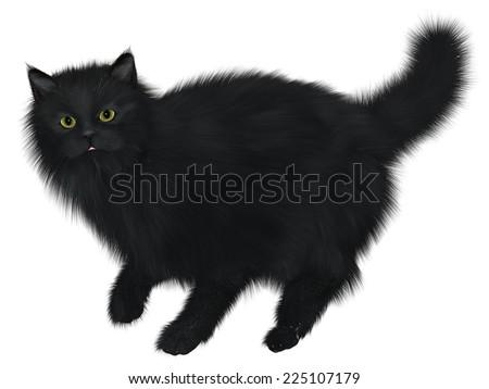 Black Cat Walking - A black cat is one of the spiritual symbols of Halloween. - stock photo