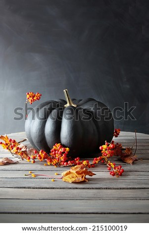 Black colored pumpkin with berries and leaves on table - stock photo