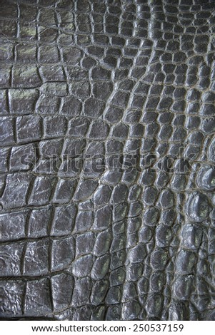 Black crocodile leather texture closeup background. - stock photo