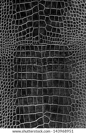 black crocodile skin texture as a wallpaper - stock photo