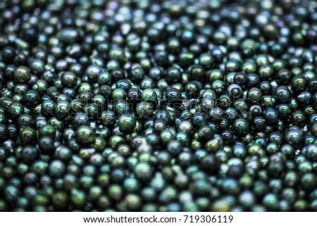black cultured pearls, tahiti polynesia