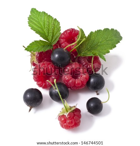 Black currant and raspberry isolated on a white background - stock photo