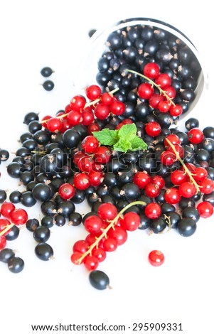 Black currant and red currant scattered on white