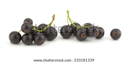 Black currant isolated on white background closeup - stock photo
