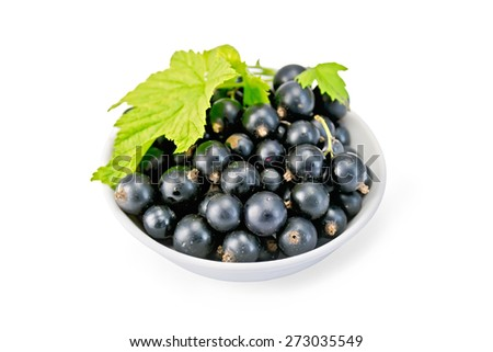 Black currants in a white bowl with green leaf isolated on white background - stock photo