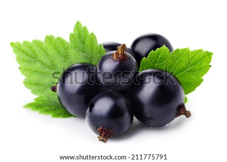 Black currants isolated on white. Shiny, glossy appearance - stock photo