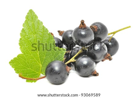 Black Currants with Green Leaf Isolated on White Background - stock photo