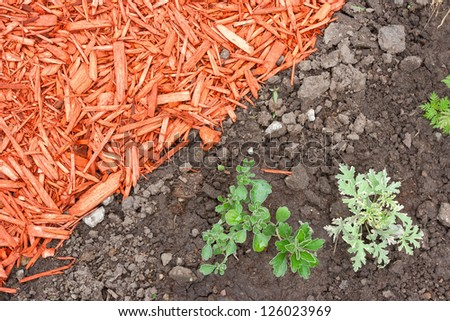 Black dirt and red mulch background - stock photo
