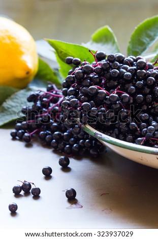 Black elderberries, Sambucus nigra, in enamel bowl. Lemon and leaves on metal background. Vertical, copy space, close up, selective focus, back lit - stock photo