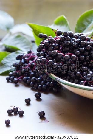 Black elderberries, Sambucus nigra, in enamel bowl with leaves on metal background. Vertical, close up, selective focus, back lit - stock photo