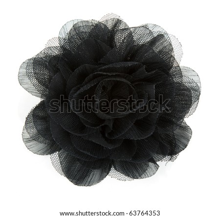 Black flower rose from lace on white background - stock photo