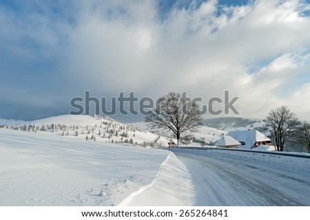 Black Forest Country Road - stock photo