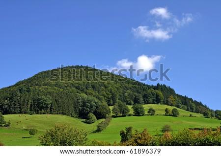 Black forrest landscape - stock photo