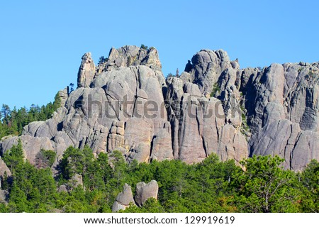 Black Hills National Forest - stock photo