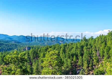 Black Hills National Forest in South Dakota - stock photo